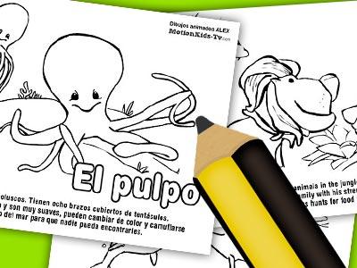 fichas-animales-descargar-dibujos