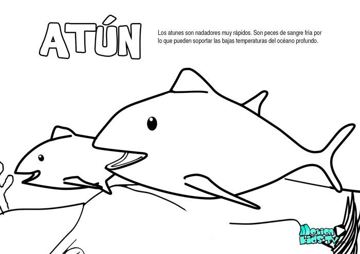 Atun, dibujos para colorear de peces educativos para niños