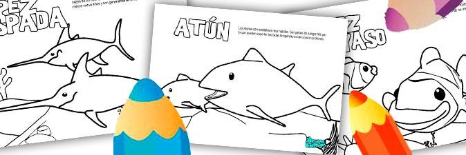 dibujos-para-colorear-peces-descargables