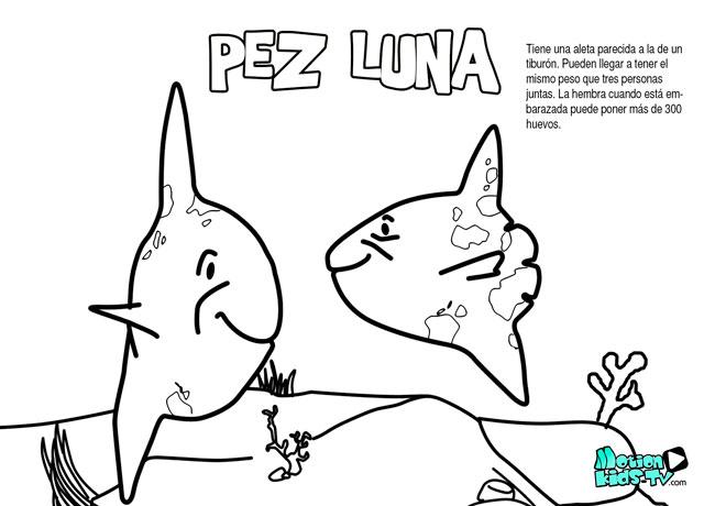 Pez luna, dibujos para colorear de peces educativos para niños