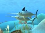 Pez espada - Animales del mar