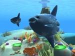 Pez luna - Animales del mar
