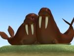 Morsa - Animales del mar