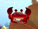 Cangrejo - Animales del mar