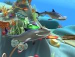 Pez martillo - Animales del mar