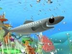 Sardinas - Animales del mar