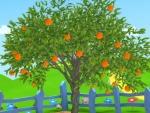 Naranja - Dibujos de frutas y verduras