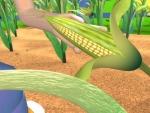 Maiz - Dibujos de frutas y verduras